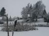 dam-med-sne