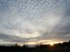 Cirrocumulus skyer