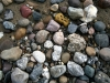 mange-sten