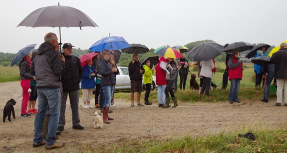 Midsommersangen blev sunget til regndråbetrommen på paraplyerne. Foto: Peter Jessen