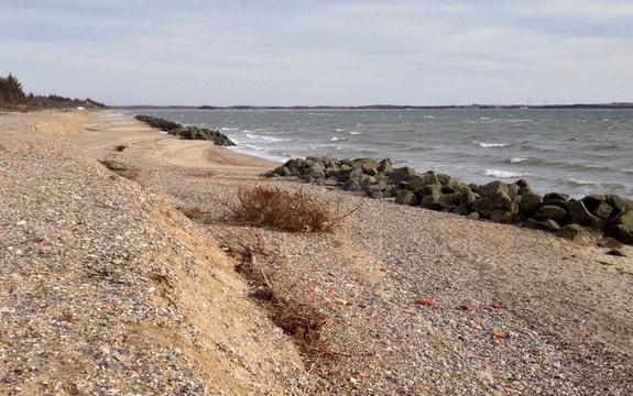 Kystbeskyttelseslaget ønsker lodsejernes opbakning til en forstærkning af kystbeskyttelsen. (Foto: Ingrid M. Schmidt)