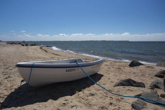 Kystsikringen ved Hostrup Strand har virket. Bag bølgebryderne har der dannet sig en fin sandstrand. Men kystsikringen har en pris ... (Foto: Peter Jessen)