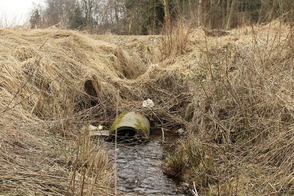 Røret under Havtjørnevej er ved at være tæret op og skal skiftes ud, mener Skive Kommune, som vil sende regningen for arbejdet videre til ejeren af jorden omkring stedet - Grundejerforeningen Hostrup Teglgaard. (Foto: Peter Jessen)