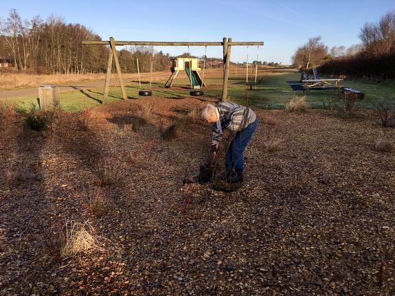 Vera N ielsen i aktion med buske og skovl. Foto: Jens Frede Nielsen